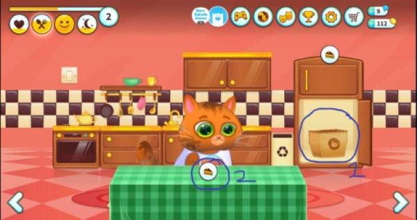 Cho mèo Bubadu ăn nào
