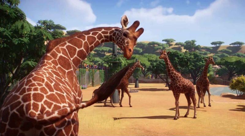 game hay PC planet Zoo với muôn thú trong game